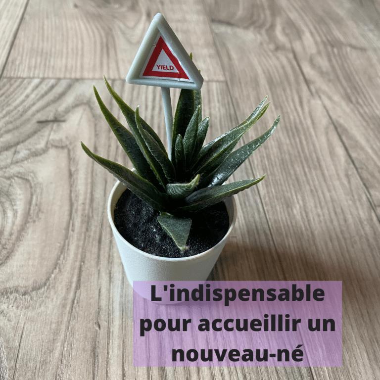 Read more about the article L'indispensable pour accueillir un nouveau-né